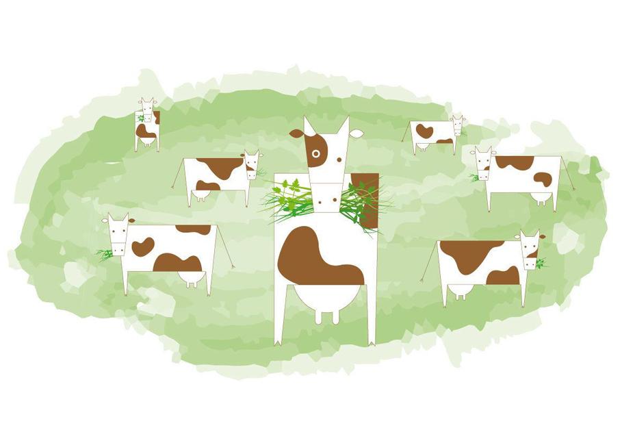 Kühe grasen auf der Weide