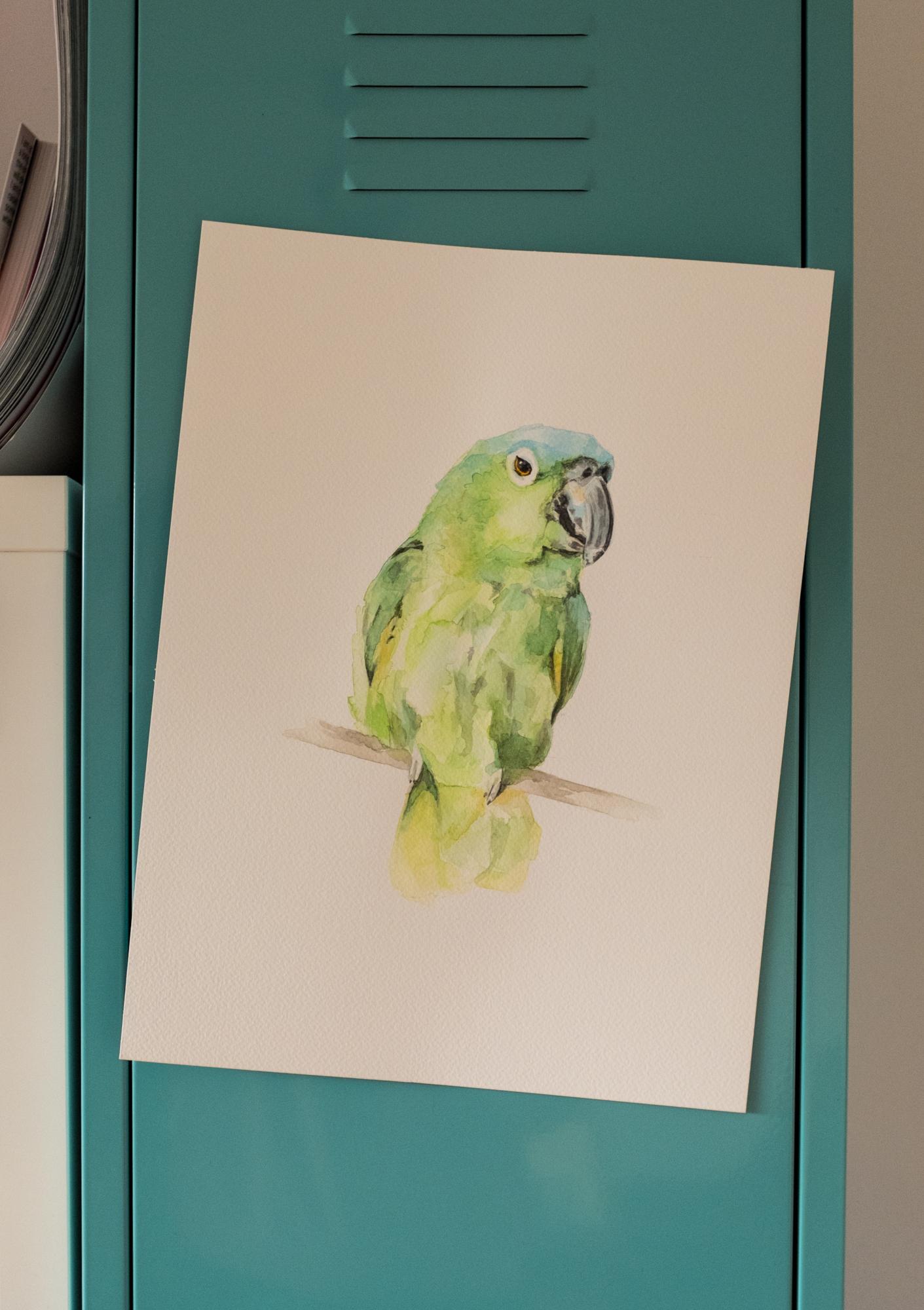 Das Aqurellporträt eines Papageien.